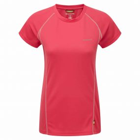 Vitalise Base T-Shirt Electric Pink