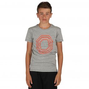 Dare2b Nonsense T-Shirt Ash Grey Marl
