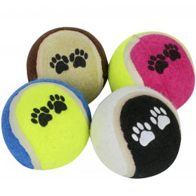 Regatta Fetch Ball Set 6cm Diameter