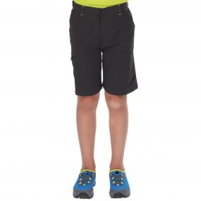 Regatta Sorcer Shorts Ash