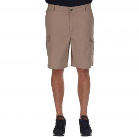 Regatta Mens Delph Short Nutmeg Cream
