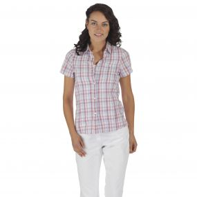 Regatta JENNA SHIRT Red Violet
